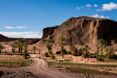 Ouarzazate. Oasis De Fint